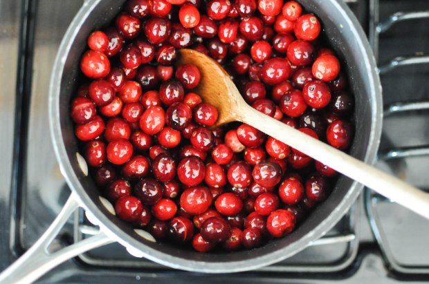Easy Homemade Paleo Cranberry Sauce | Fed+Fit-17
