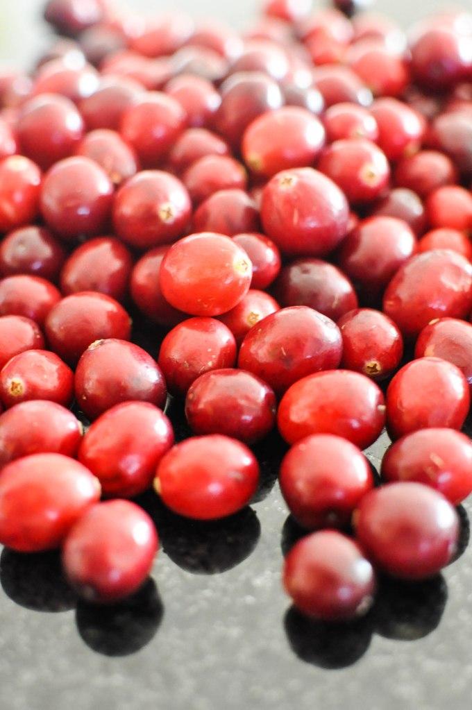 Paleo Sweet Potato Cranberry Stuffing   Fed+Fit-62