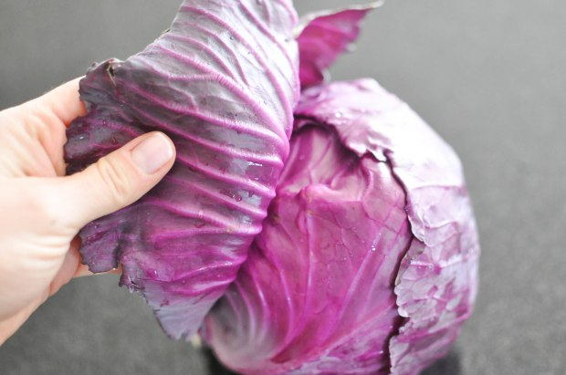 Gather's Roasted Green and Purple Cabbage   Fed+Fit-10