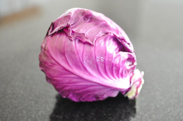 Gather's Roasted Green and Purple Cabbage   Fed+Fit-11