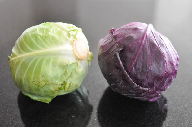Gather's Roasted Green and Purple Cabbage | Fed+Fit-9