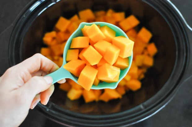 Paleo Winter Squash and Beef Stew | Fed+Fit-24